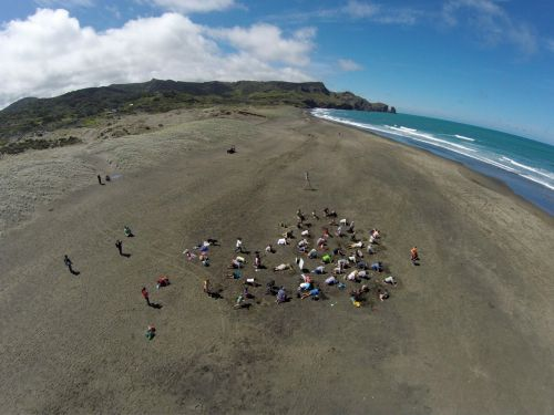An aerial (UAV) photo of #HeadsinSandNZ at Bethells Beach. Photo:  Chris Jackson