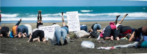 Signs of the times at Bethells Beach for #HeadsInSandNZ. Photo: Liz March