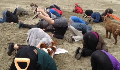 At Invercargill's Oreti Beach, it was climate change rather than toheroa that had people digging in the sand. Photo credit: Dave Kennedy